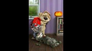 Прикол говорящие животные собака Бен кот Том кот Джинджер 6