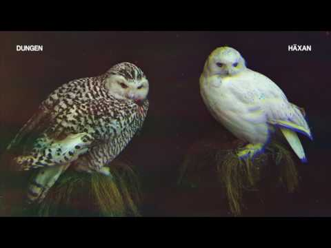 Dungen - Achmed flyger [Official Audio]