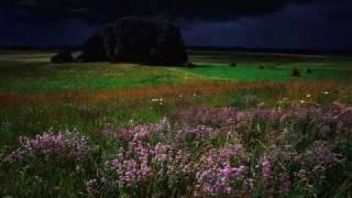 I Recall A Gypsy Woman   ~~   Waylon Jennings