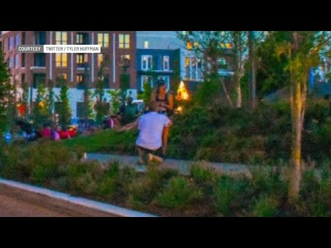 Vern - Photographer unknowingly snaps proposal while taking pictures of fireworks!