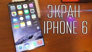 видео IPhone 5 Замена рамки дисплея/кнопки home