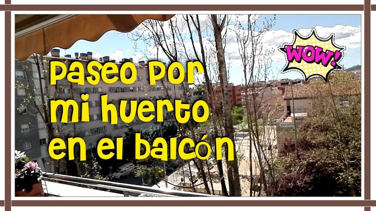 Paseo por mi huerto en el balc n huerto urbano mi huerto - Huerto urbano balcon ...