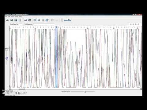 Sequence Analysis Using Finch TV And BLAST