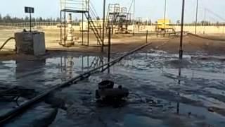 Я люблю нефть