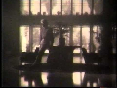 Peter Cetera - Next Time I Fall (Music Video)