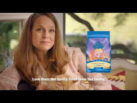 BLUE For Cats | Blue Buffalo Cat Food