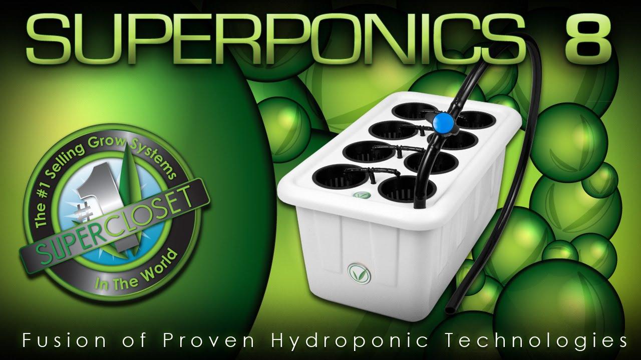 How To Grow Hydroponics Diy Hydroponics Hydroponics
