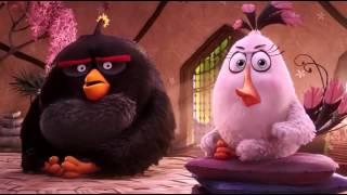 Sample The Angry Birds Movie 2016 720p WEBRip x264 Dual Audio Hindi   English   LOKI   M2Tv