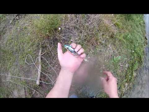 Using A Lure Retriever While Bank Fishing To Reclaim Lures Anywhere.