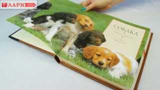 Эксклюзивная сувенирная книга ручной работы