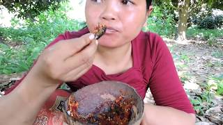 Primitive Technology - Find cricket- cook on rock eating delicious