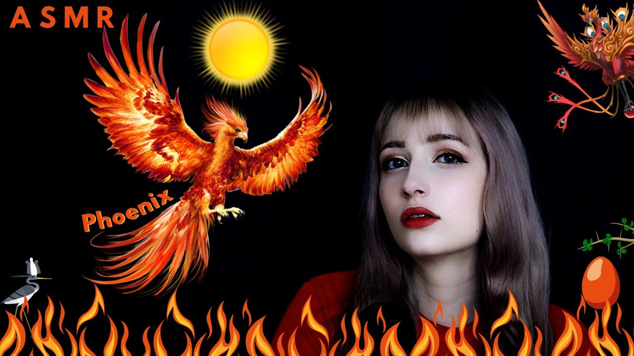 ASMR Mythology│Phoenix & Vermilion Bird 🔥