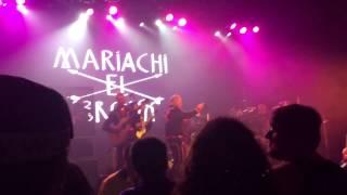 Mariachi el Bronx - 48 Roses - live Toronto