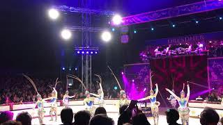 Dresdner Weihnachts-Circus