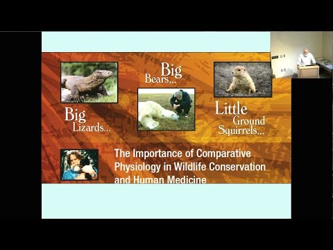 """SNARL Seminar: May 22, 2018 """"Big bears, big lizards and little ground squirrels..."""""""