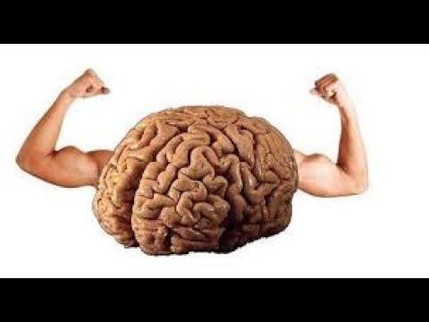 Mental Up Beyin Ve Zeka Gelişimi