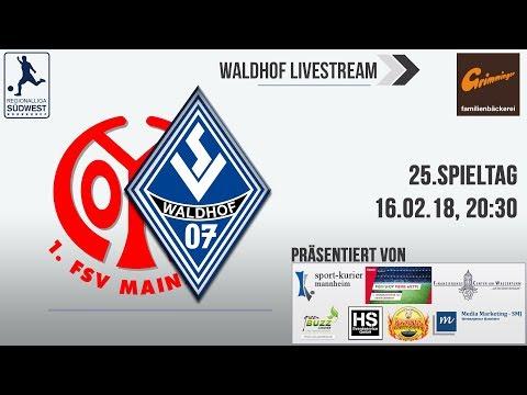 25.Spieltag: FSV Mainz 05 II - SV Waldhof
