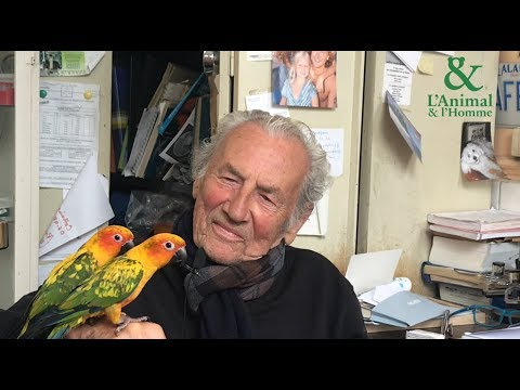 Interview de Philippe de Wailly : la star des perroquets