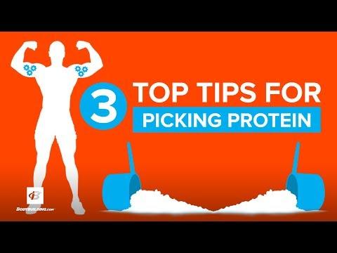 3 Top Tips for Picking Whey Protein   Doug Kalman Ph.D.