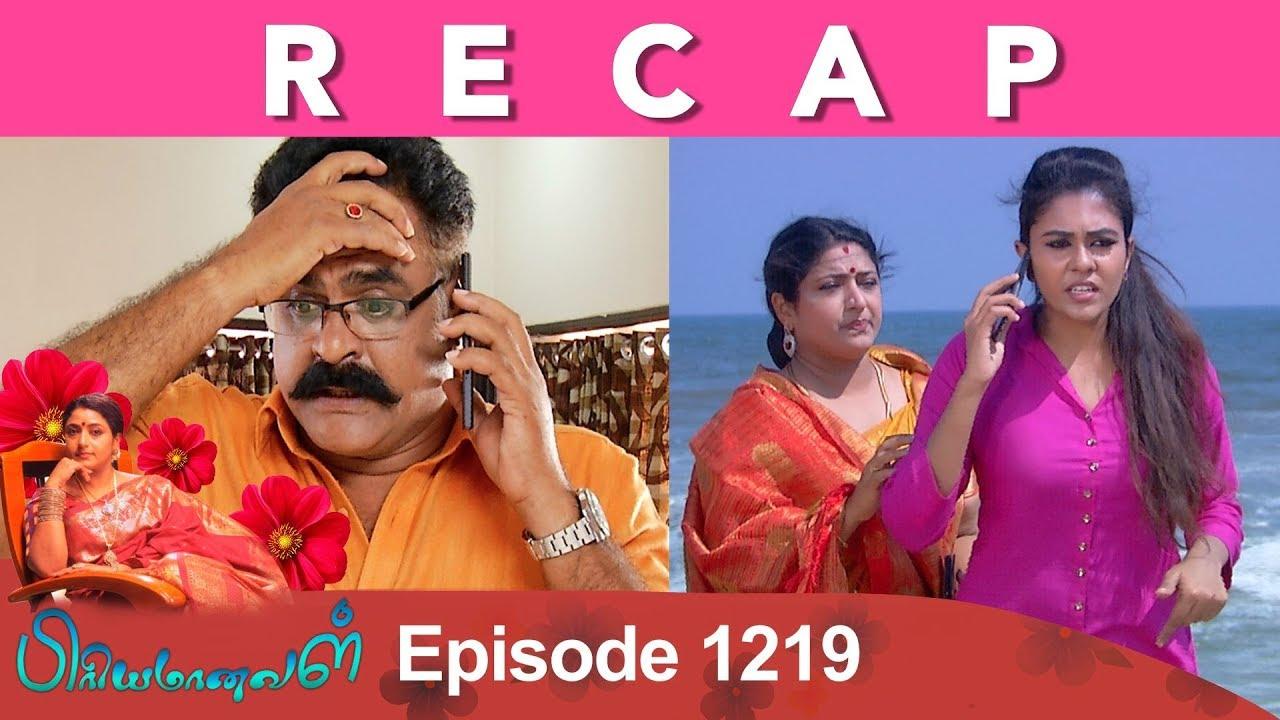 RECAP : Priyamanaval Episode 1219, 17/01/19