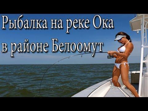 Рыбалка на реке Ока в районе Белоомут