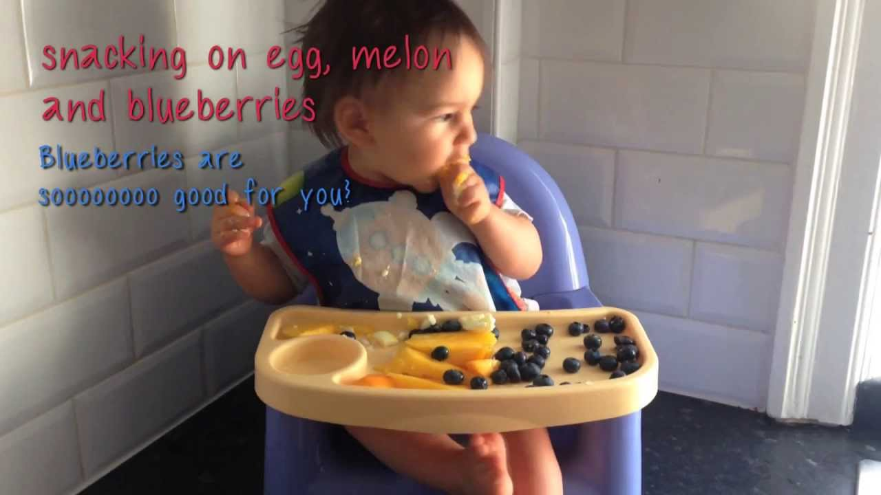 Baby Led Weaning From 10 Months To 1 Year Youtube