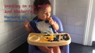 baby led weaning from 10 months to 1 year