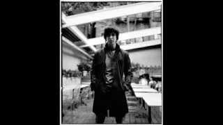 Julian Casablancas - Tourist (lyric video)