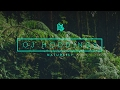 OJ Hoddings - Naturally   Flyotw Present