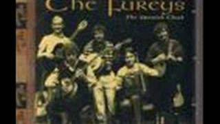The Fureys- When You Were Sweet Sixteen