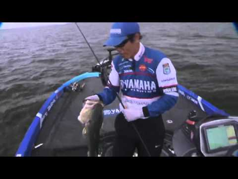 LIVE Rewind: Takahiro finds a monster bass on Wheeler Lake