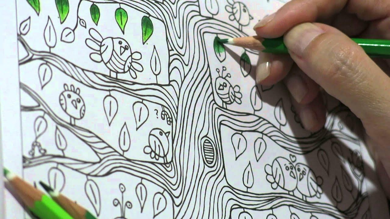 Livros De Colorir Colorindo Floresta Encantada Youtube