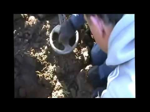 ROMAN SOLDIERS SILVER COIN HOARD FOUND METAL DETECTING RECORDED LIVE  Low