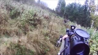 Охота на лося с собакой с подхода 2017