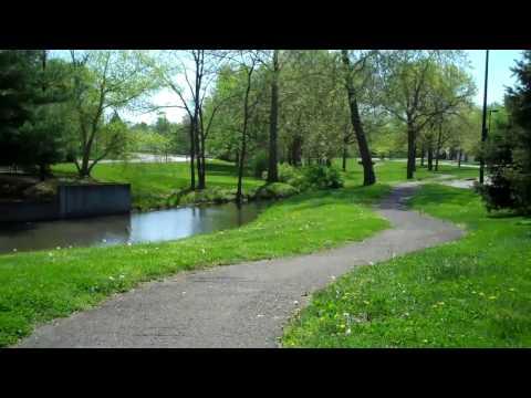 Lexington Ky Neighborhood Tour By The LEXpert:  Willow Oak