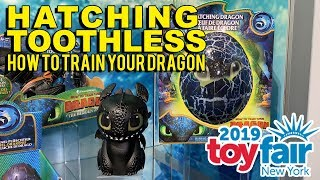 Hatching Toothless How To Train Your Dragon at Toy Fair 2019!