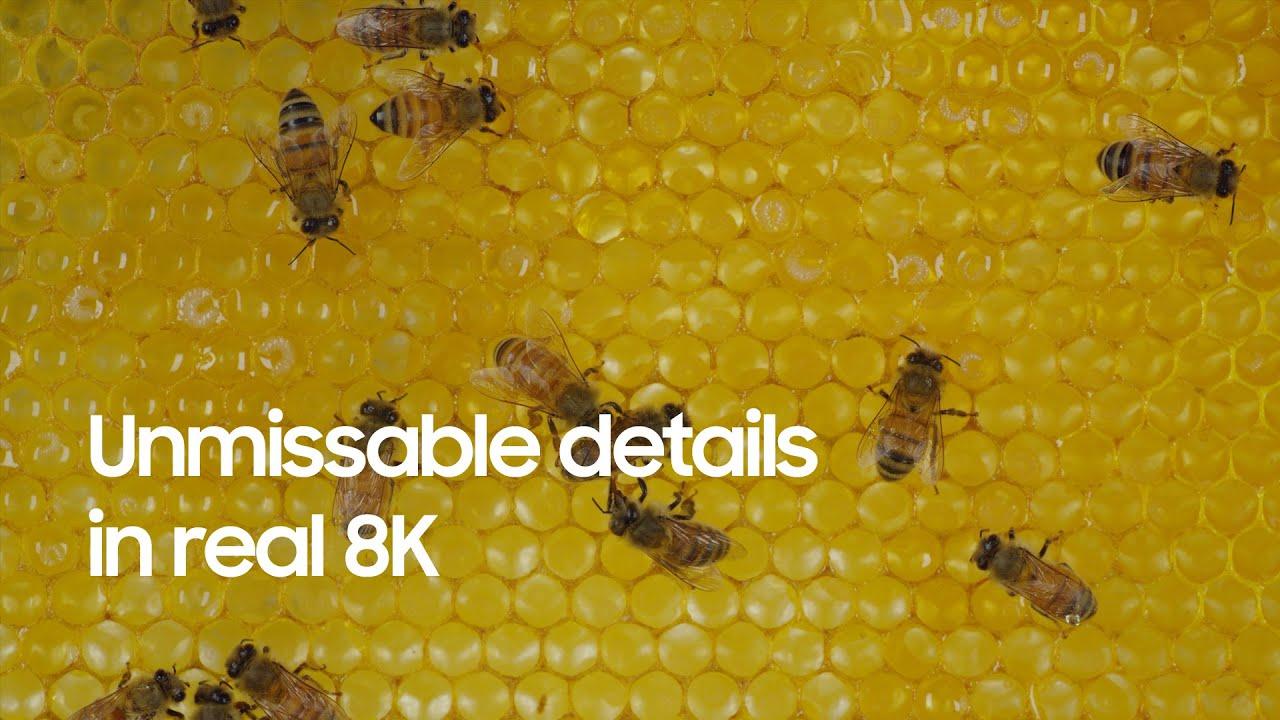 QLED 8K: Unmissable details in real 8K   Samsung