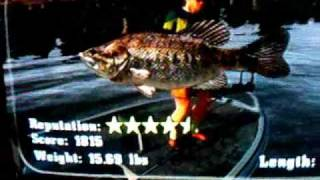 rapala fishing frenzy. xbox 360