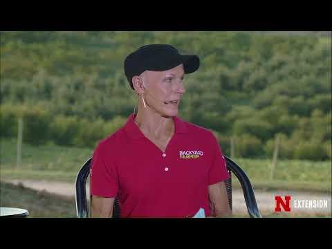 Backyard Farmer September 14, 2017