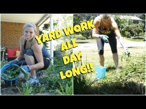 💪Pulling Weeds and Planting Grass Seed💪YARD WORK ALL DAY!