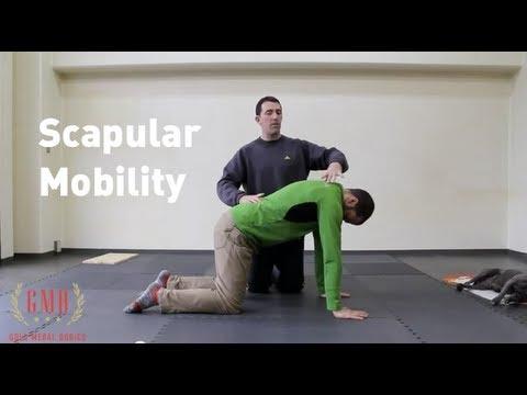 Shoulder Stretch and Scapular Mobility Tutorial