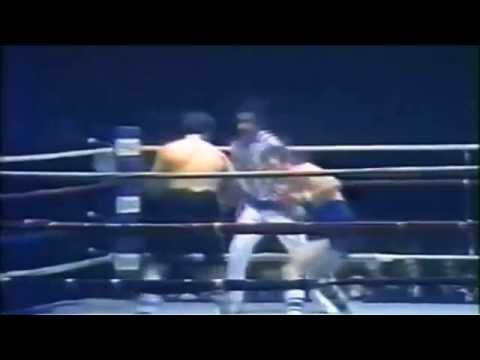 Pro Boxing 1981