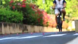 Inside Out Tokyo Bike