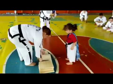 Joey Brooks - When Little Fighters Follow Instructions Too Perfectly