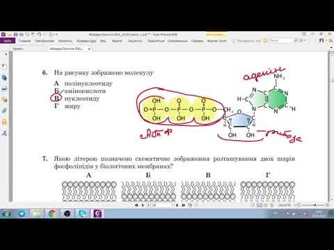 Решение тестов ЗНО-2018 биология (разборы, ответы)