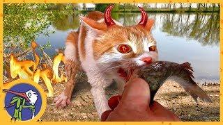 Едем на рыбалку. В котика Рыжика вселился демон