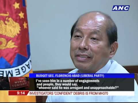 Allies: Roxas more than qualified to be the next president
