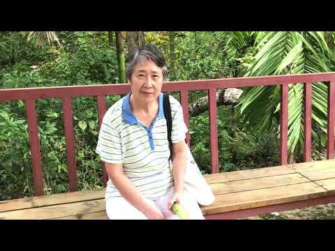 SE Asia Travel Diary: China's Hainan Island - wuzhishan - five fingers mountain