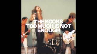 Watch Kooks Too Much Of Nothing video