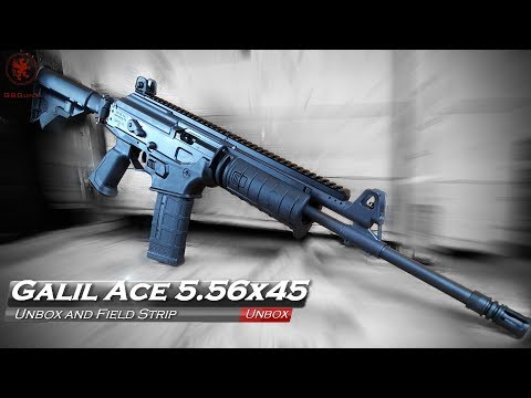 IWI Galil ACE 5 56x45: Ultimate Fighting Rifle? | The